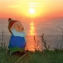 Carte postale Martin le coquin devant un coucher de soleil