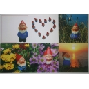 Collection de 6 cartes postales du nain de jardin Martin